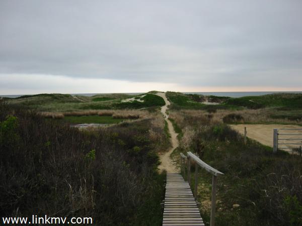 Idyllic walk to the beach