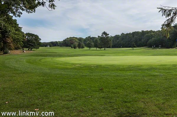 Mink Meadows Golf Course