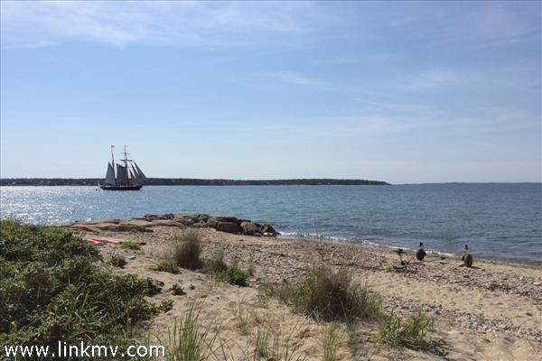 Watching the schooners glide by from the beach