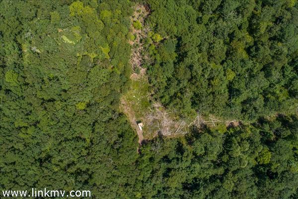 Over 3 acres in West Tisbury
